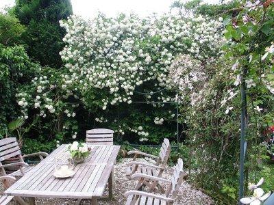 Dr. Seick Kultur- und Gartenreisen - Tagesreisen Rückblick